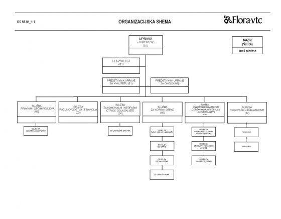 organizacijska-shemea